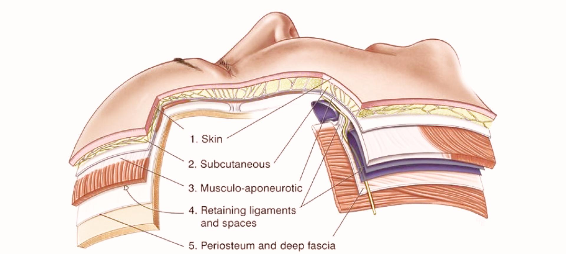 Миопластический массаж лица «Сепарирующая технология»